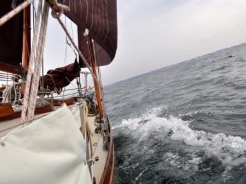 Auf dem Weg nach Mommark unter Genua