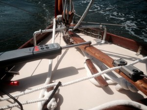 Pinnenpilot Raymarine & Pinnenarretierung Tiller Lock Seasure